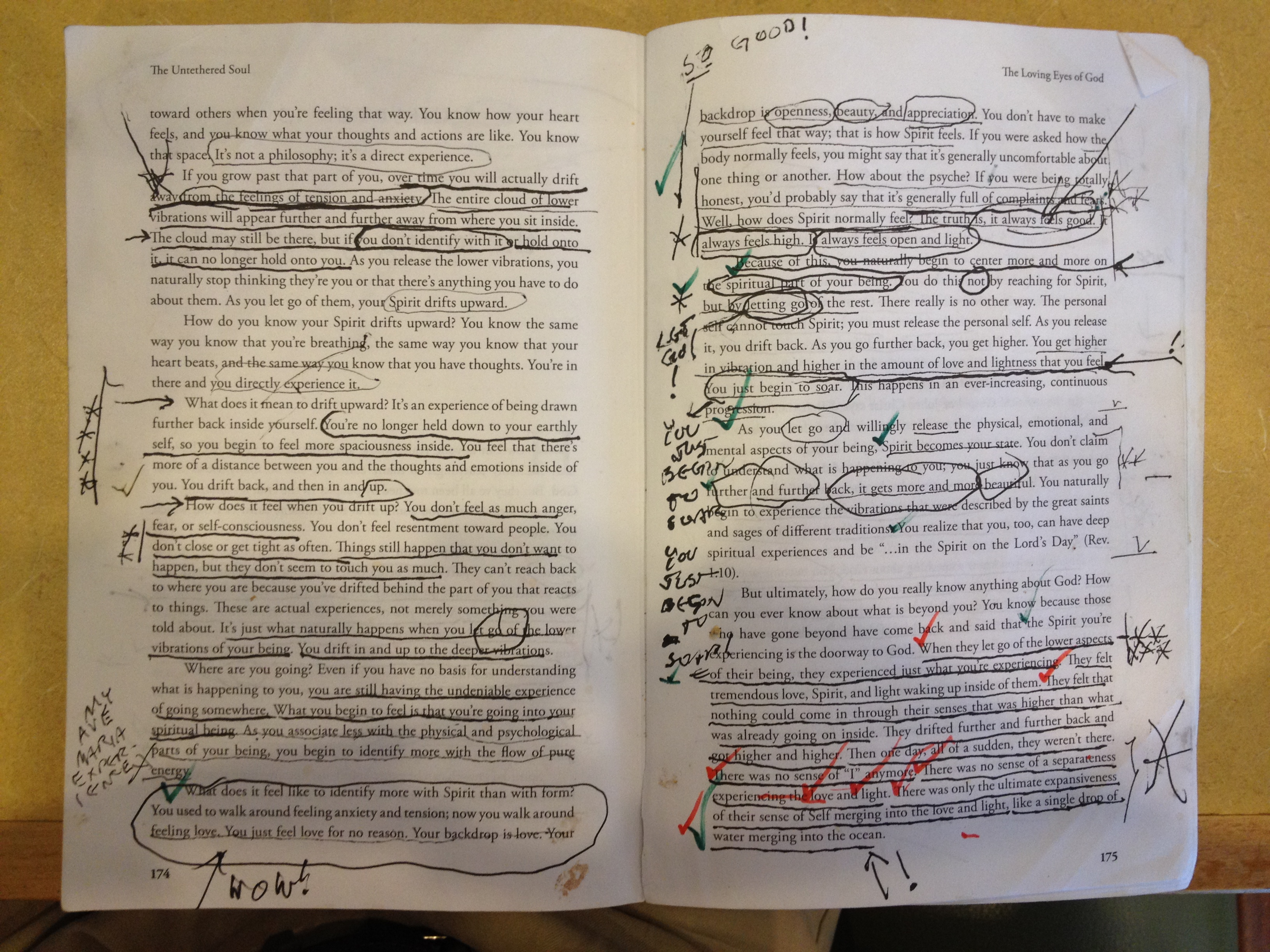 untethered-soul_lee-davis-marked-up-2-pages_img_3213